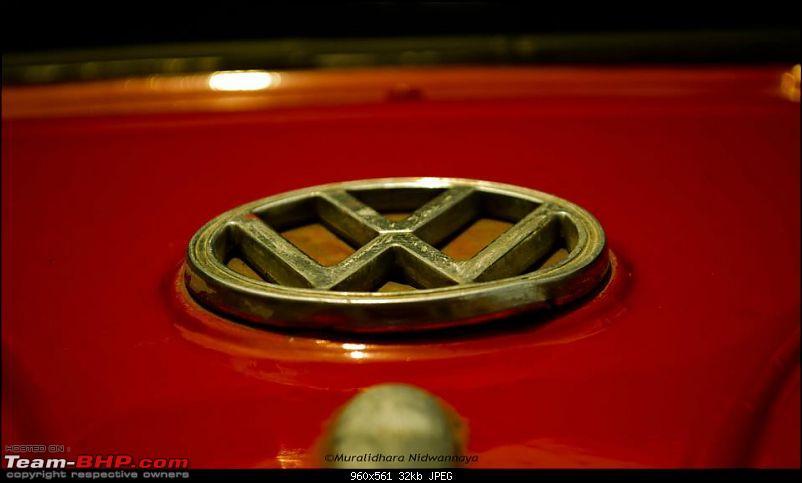 Bangalore Beetle Club (BBC)-527667_3440565688269_1094365972_3596576_1481324636_n.jpg