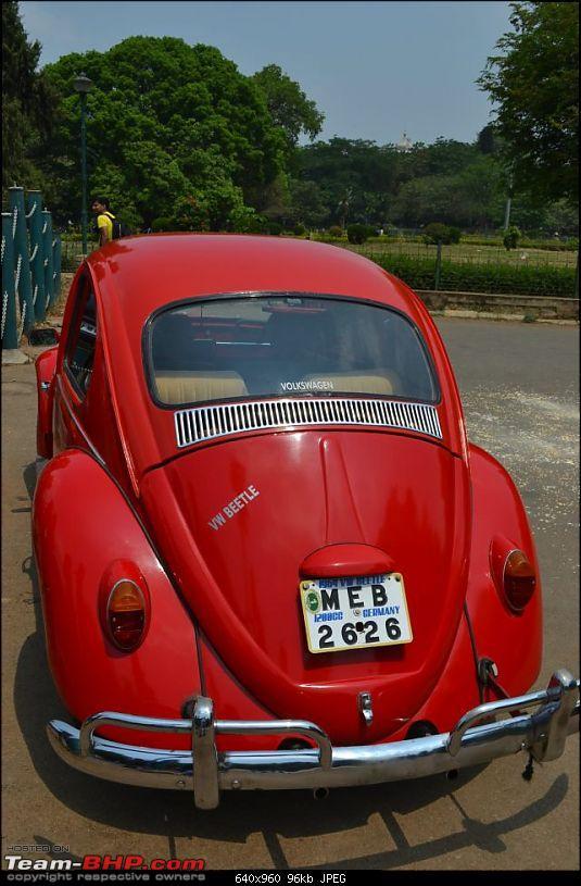 Bangalore Beetle Club (BBC)-292963_10150609129820964_653315963_9246604_863334408_n.jpg