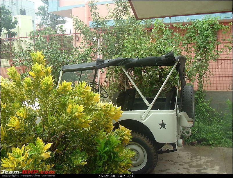 Austin Champ 'Jeep' - Nawab of Bhopal-jeep-005.jpg