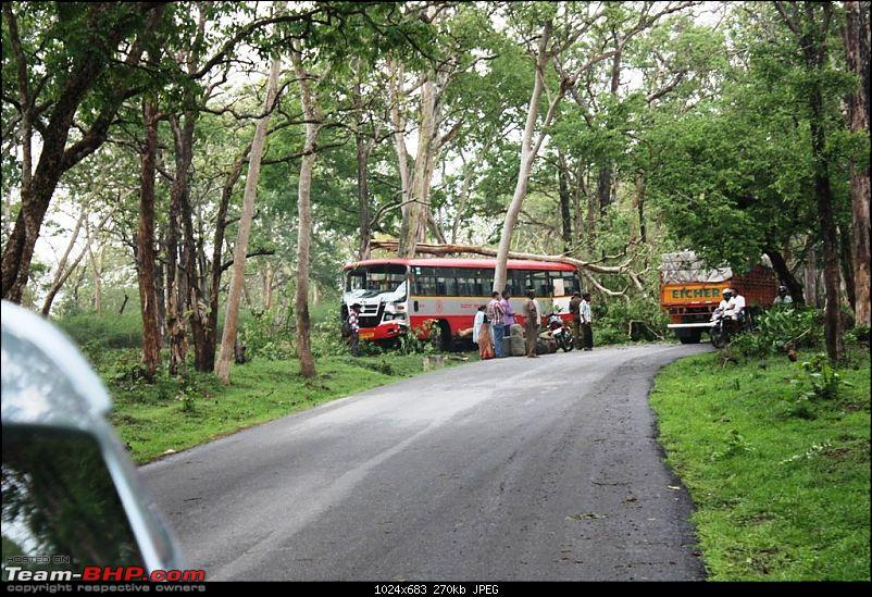 Pics: Accidents in India-accident-bandipur.jpg
