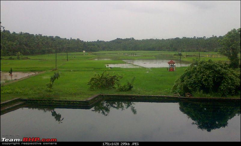 Monsoon is here, why not drive to Malnad?-mon.jpg