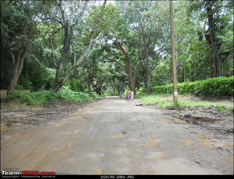 Bangalore - Kannur : Route Queries-dscn7981.jpg