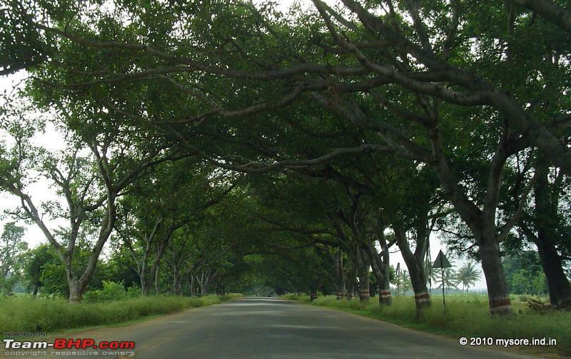 Name:  bangaloremysoreroad.jpg Views: 5864 Size:  104.9 KB