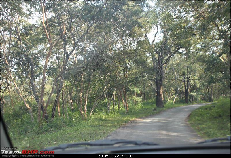 Bangalore - BR Hills : Route Queries-img_1400.jpg