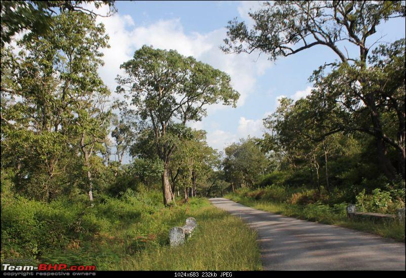 Bangalore - BR Hills : Route Queries-img_1421.jpg