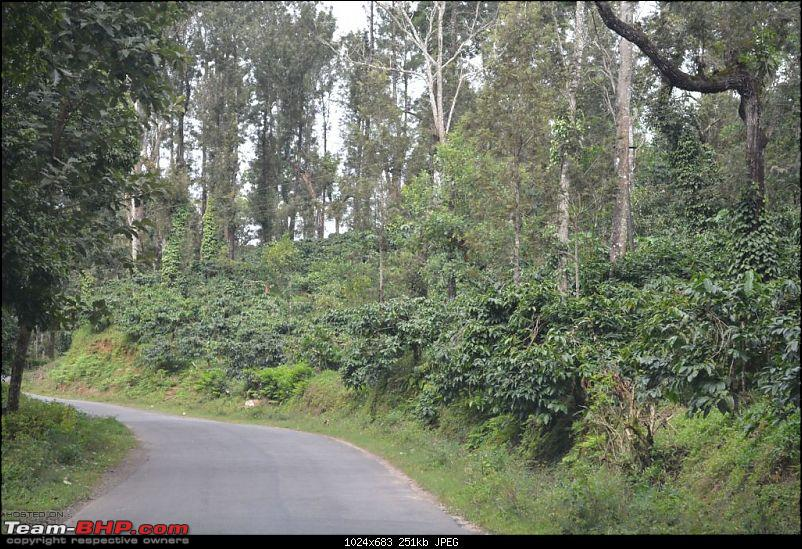 Coorg recommendations-dsc_0152.jpg