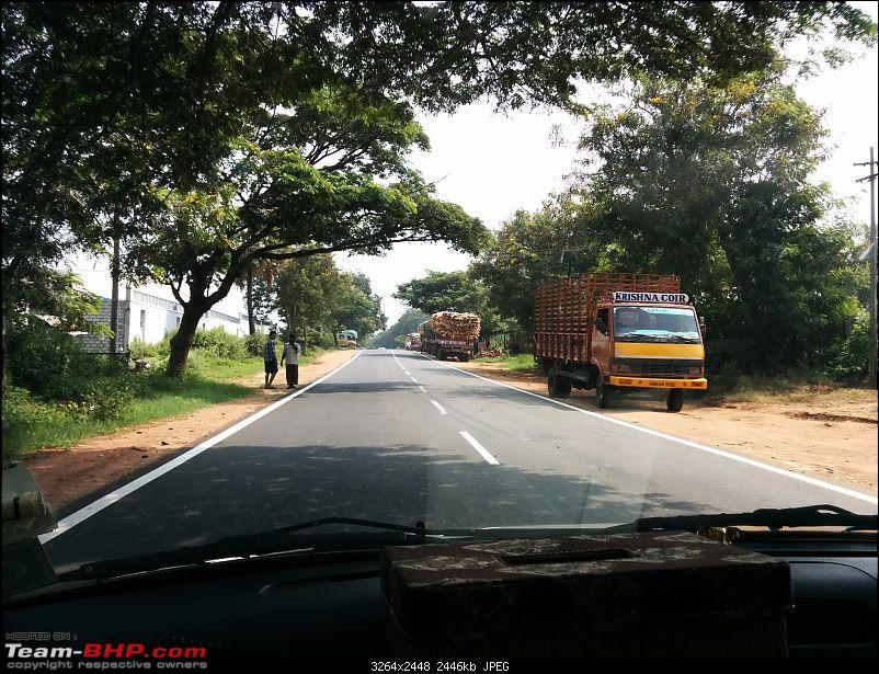All Roads to Kerala-pollachimeenakarai-road.jpg