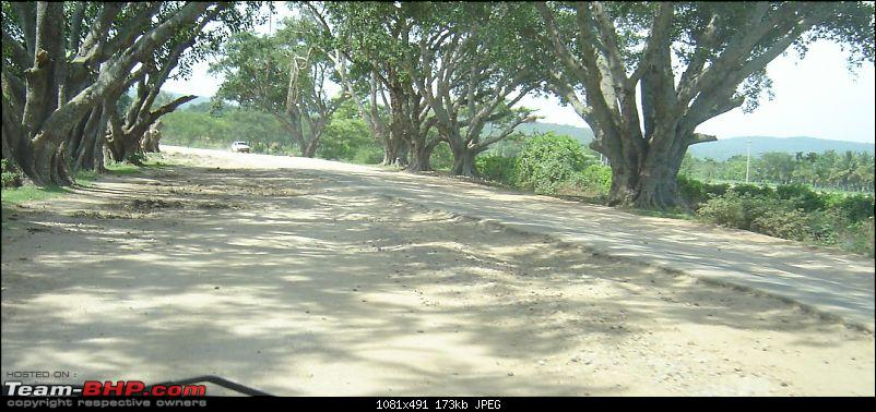 Bangalore - Mysore - Ooty : Route Queries-road-after-gundlupet.jpg