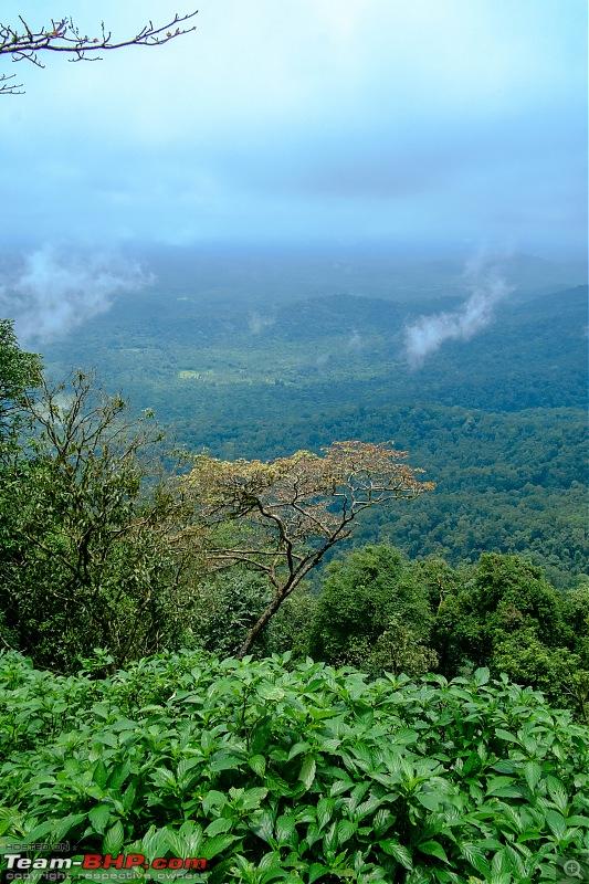 Bangalore to Kollur Mookambika : Route Queries-dscf8876.jpg