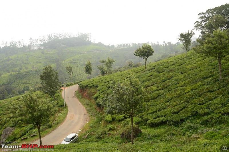Chennai to Munnar - Road Trip : Route Info Needed-dsc_8074v1.jpg