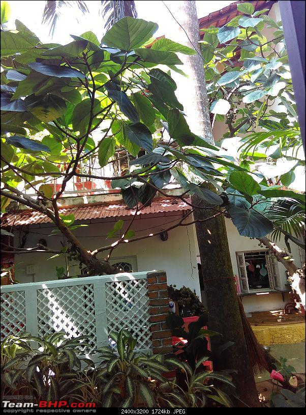 Planning for Goa, where to stay??-img_20151108_110542.jpg