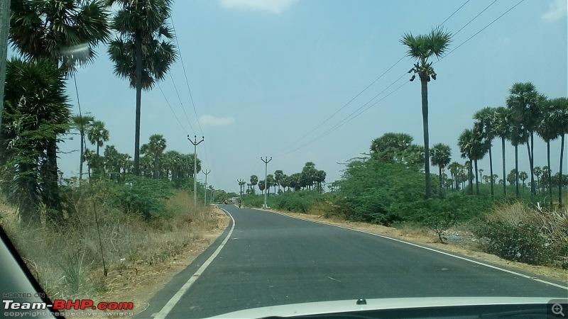 All Roads to Kerala-img_20160403_124345.jpg