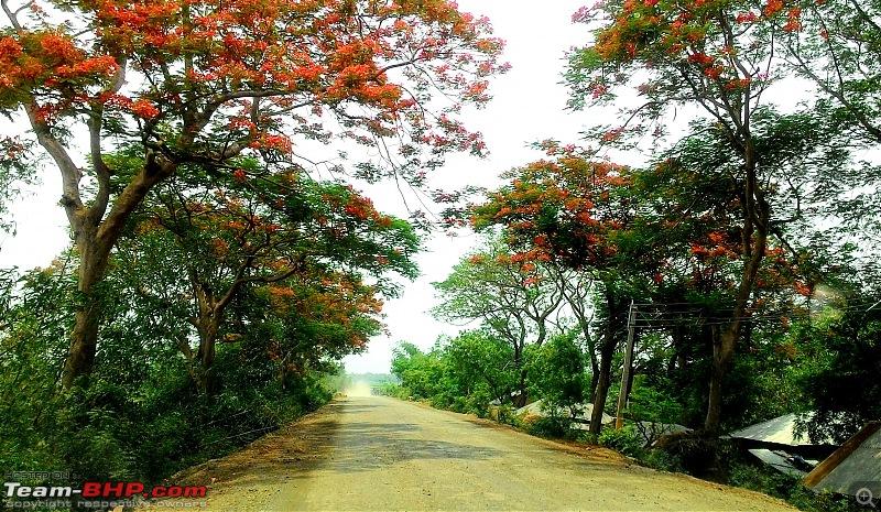 Kolkata - Siliguri route via Dumka, Bhagalpur or NH-12 (old NH-34)-p_20160611_115448_1.jpg