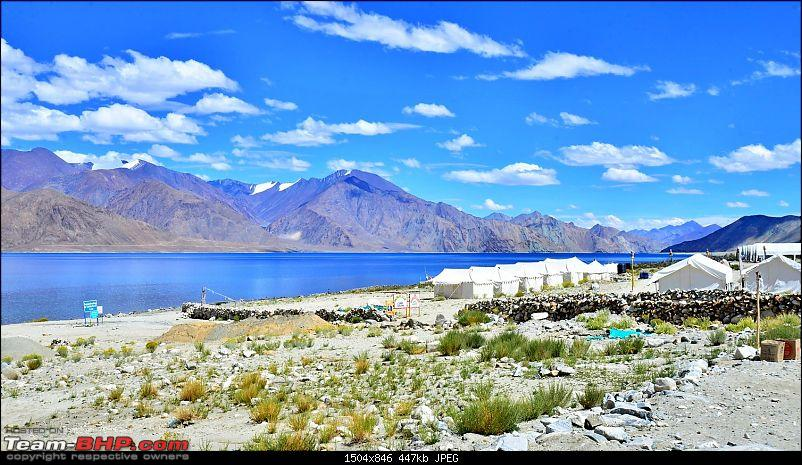 Leh, Ladakh and Zanskar - The Ultimate Guide-sam_3759.jpg