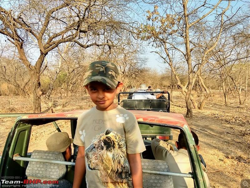 Gujarat road trip - Queries-gir_safari.jpg