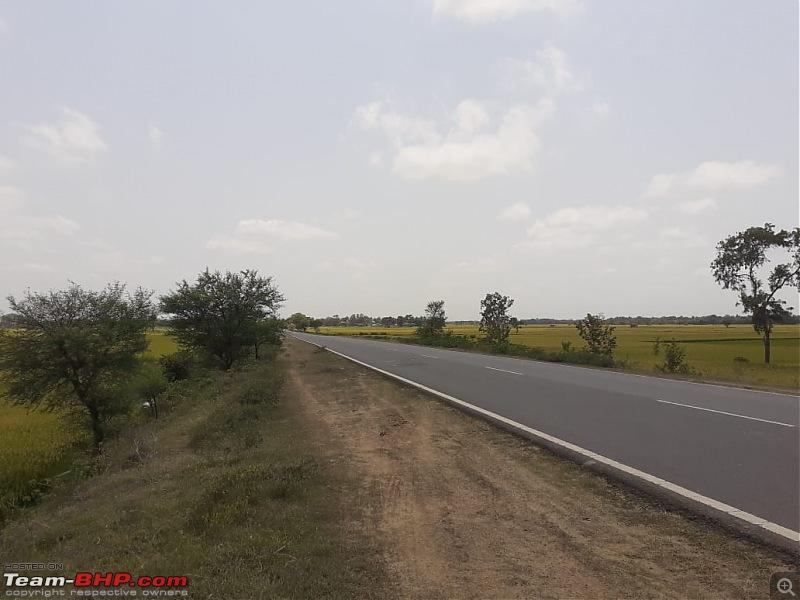 Kolkata - Siliguri route via Dumka, Bhagalpur. Avoiding NH34-paddy-fields.jpg