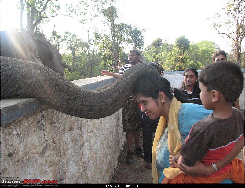 Dubare Elephant Camp - Is it any good?-img_2872.jpg