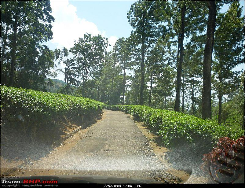 Valparai - Stay and other info-1.jpg