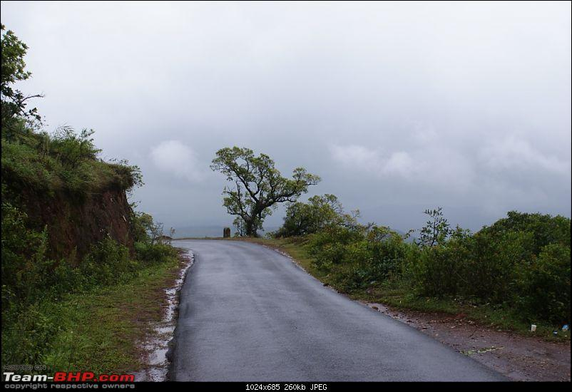 Monsoon is here, why not drive to Malnad?-dsc05657.jpg