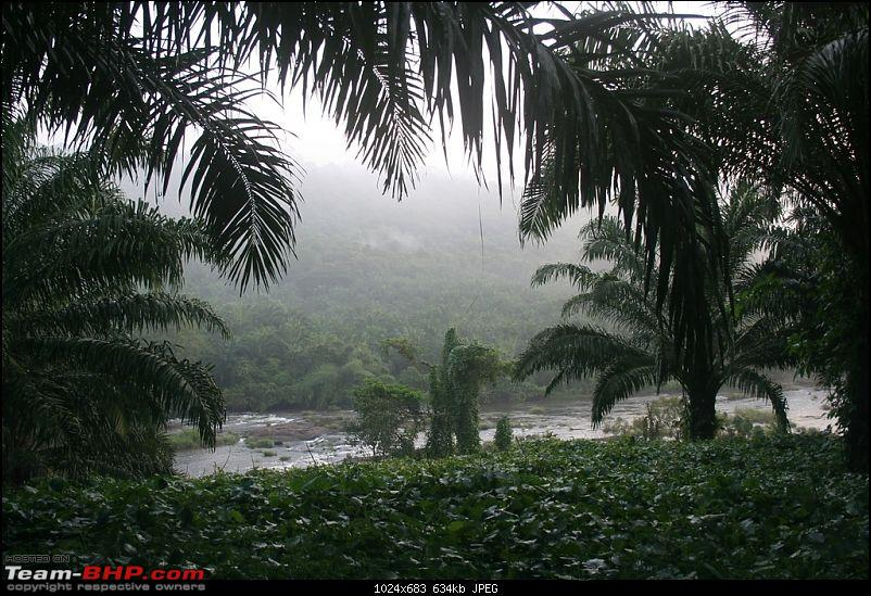 Cochin to Coimbatore- Alternate/scenic route-plantation-ezhattumugham.jpg
