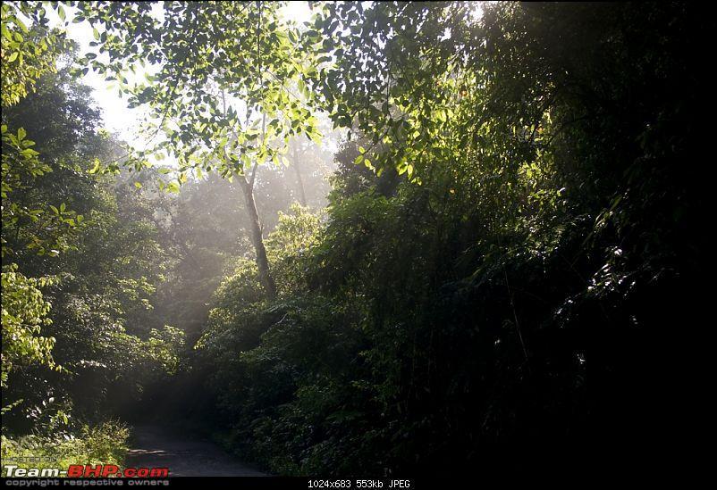Cochin to Coimbatore- Alternate/scenic route-img_5319.jpg