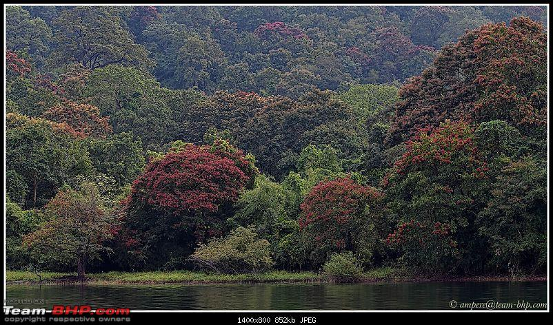 Autumn foliage in India-img_4034a3.jpg