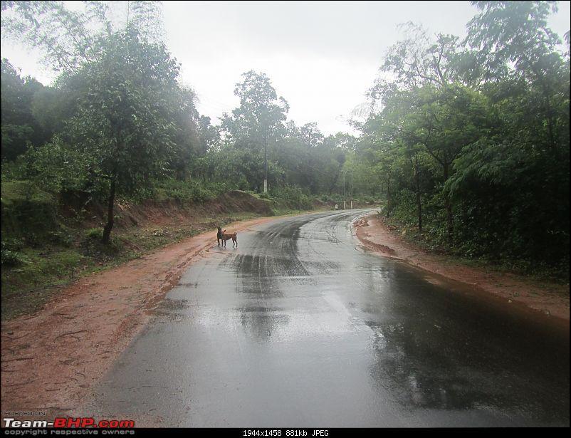 Bangalore - Thirthahalli : Route Queries-1511.jpg