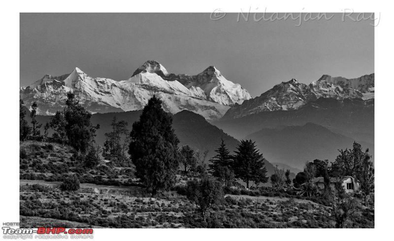 Name:  Nandadevis.jpeg