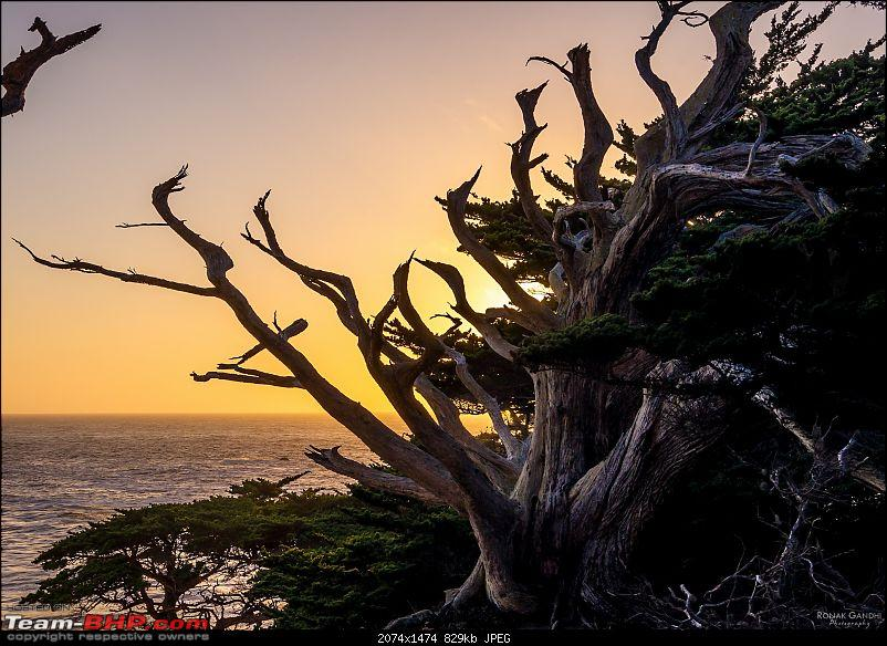 The Official non-auto Image thread-20131012point-lobos-carmel147-copy.jpg