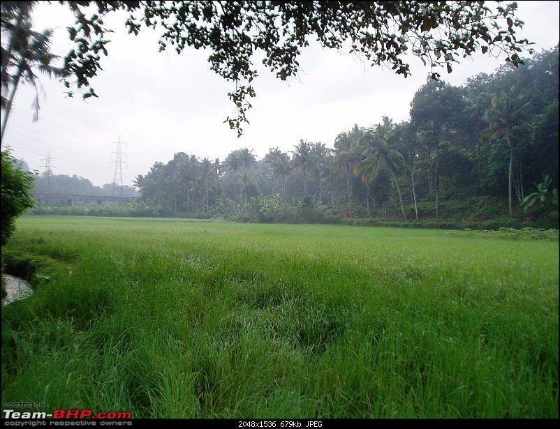 Kerala Guys, where in Kerala are you residing?-pb081766.jpg