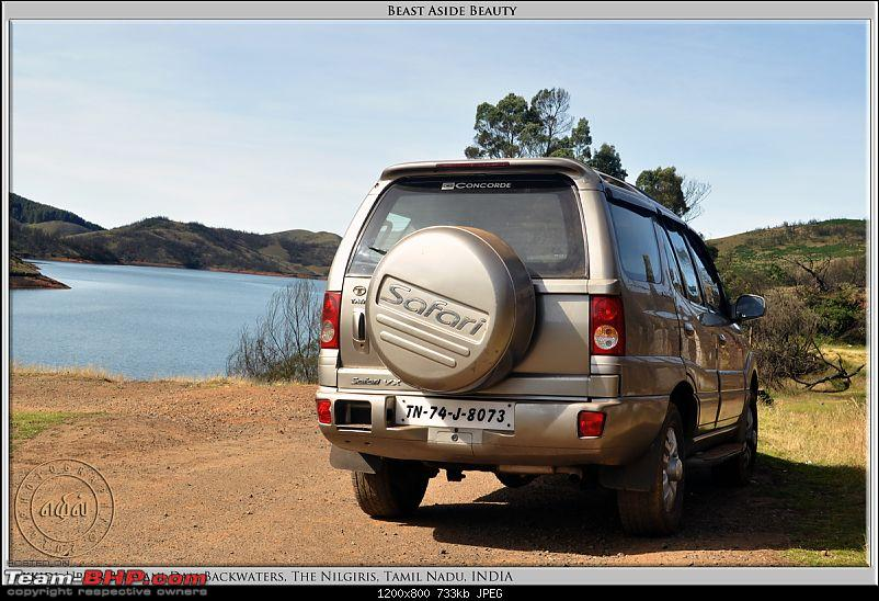 All Tata Safari Owners - Your SUV Pics here-dsc_3996-beast-beauty-01-100dpi.jpg