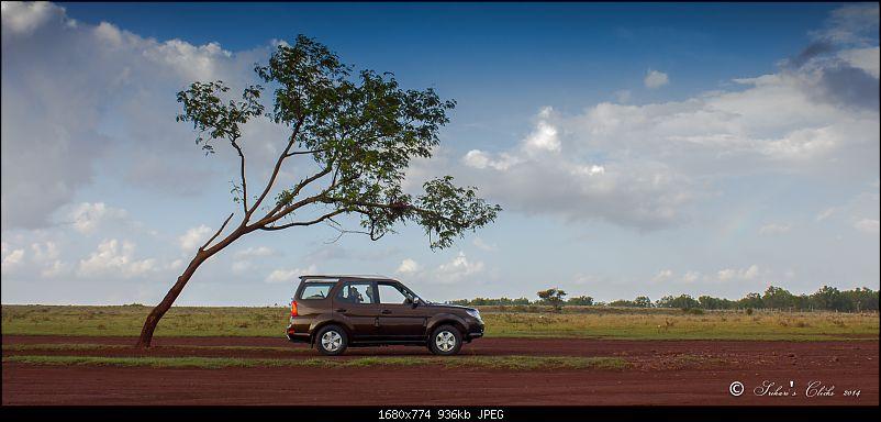 All Tata Safari Owners - Your SUV Pics here-img_5052.jpg