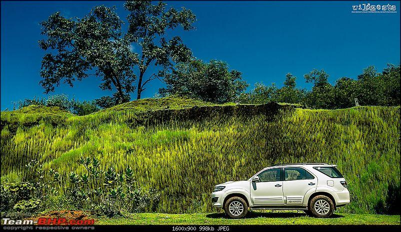 The Auto-Image thread-greenfortuner1.jpg