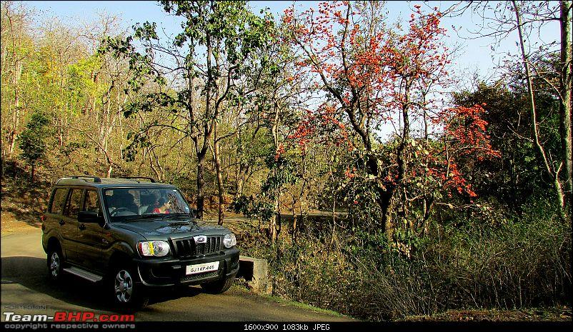 All T-BHP Scorpio Owners with Pics of their SUV-023.jpg