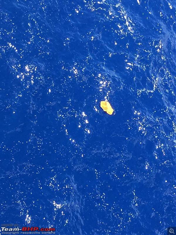 Egypt Air 804 goes missing. EDIT: Debris found-deb1.jpg