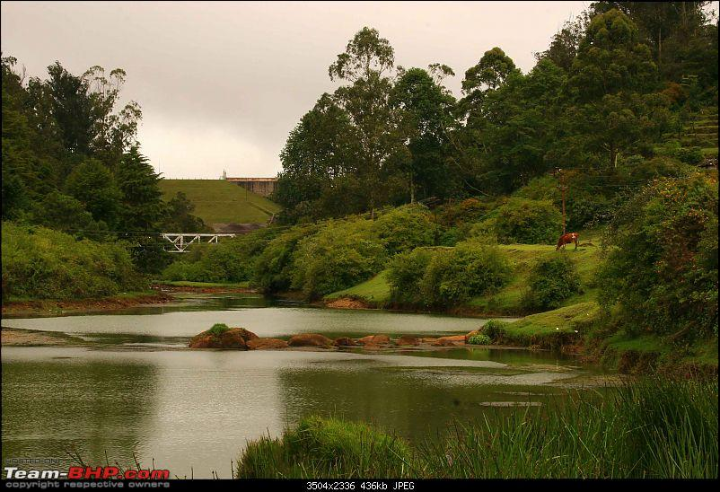 The Official non-auto Image thread-ooty-landscape.jpg