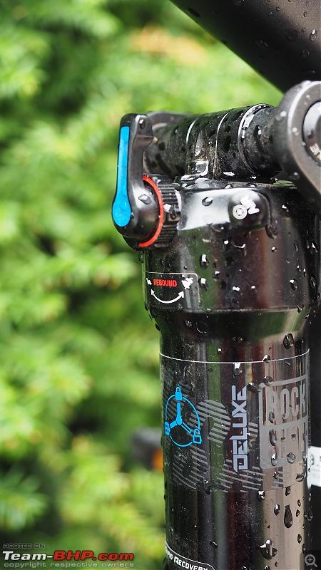 The Enduro Downhill Mountain Biking Thread-rearsuspensionsetting_1.jpg
