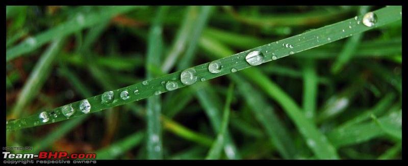 Name:  droplets.jpg Views: 2165 Size:  69.8 KB