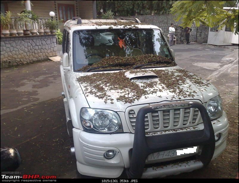 All T-BHP Scorpio Owners with Pics of their SUV-121120091258.jpg