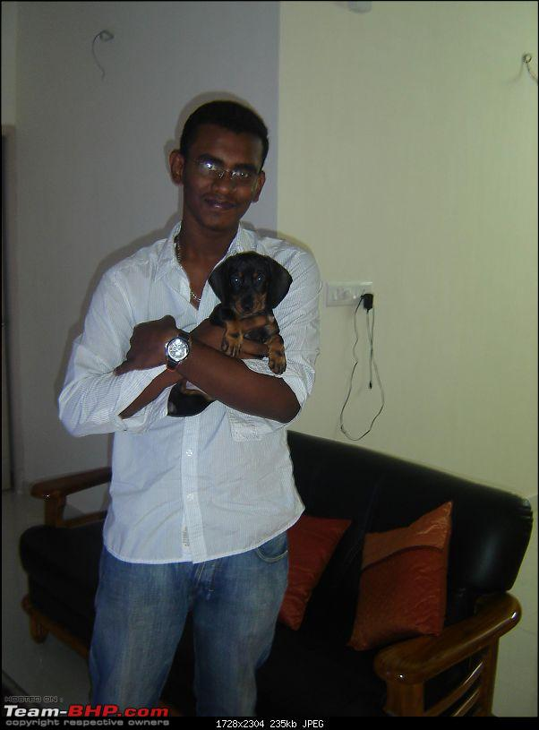 Team-BHPians and their Pets-dsc03241.jpg