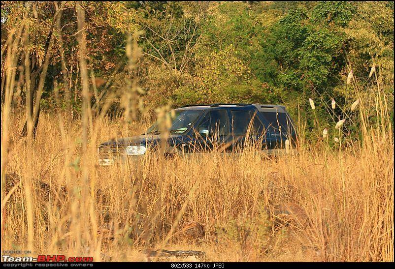 All Tata Safari Owners - Your SUV Pics here-img_4465.jpg