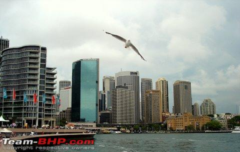 Name:  View from Opera  Sydney.JPG