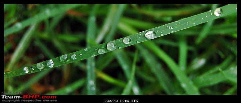 The Official non-auto Image thread-water-droplets1.jpg