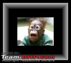 Name:  startledApe.jpg