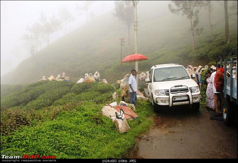 All Tata Safari Owners - Your SUV Pics here-img_1703_m.jpg