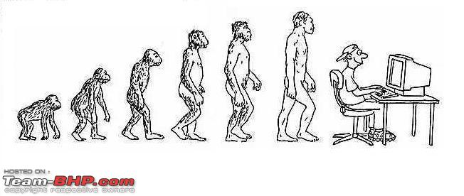 Name:  Human evolution.jpg