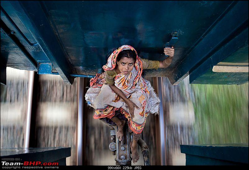 Enter,National Geographic 'Photograph of the Year' contest 2010-n15_amyhelenejohansson.jpg