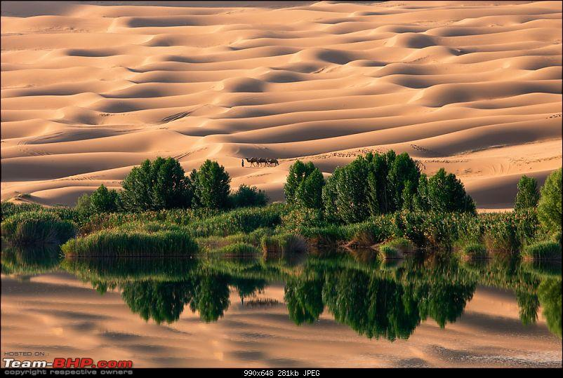Enter,National Geographic 'Photograph of the Year' contest 2010-n29_namingeun.jpg