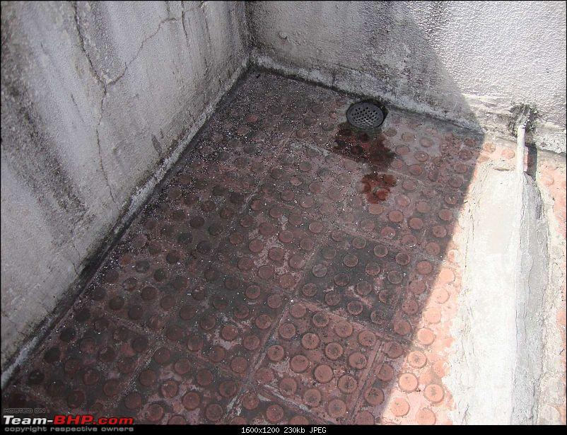 Home Improvement - Waterproofing Your Roof-dsc027771600.jpg