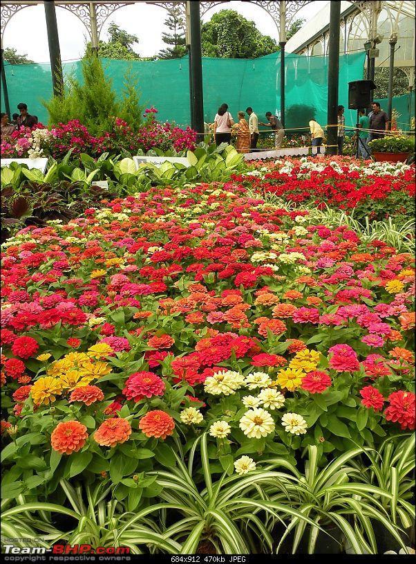 Lalbagh Flower Show - Bangalore-dscn0028.jpg